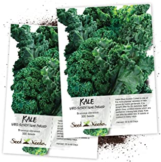 kale vates blue scotch