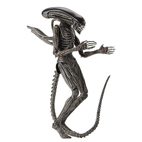 Xenomorph Costume: Amazon com