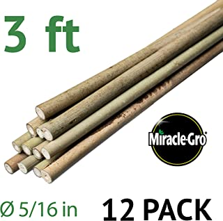 Bond SMG12030 Miracle-Gro 3 ft x 5/16 in Packaged Bamboo Stakes, 12 Pack, Natural
