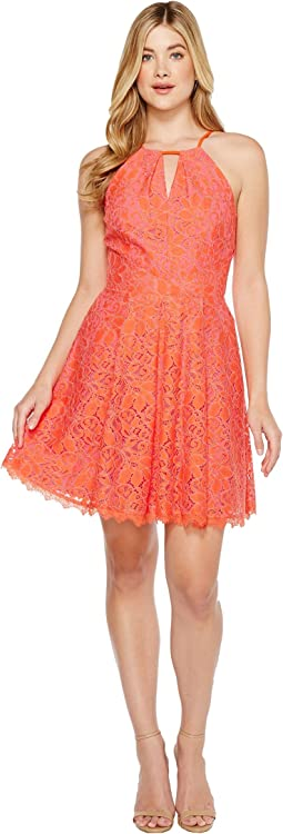Renee Lace Fit and Flare Dress