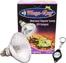 Amazon Com 100w Mercury Vapor Bulb