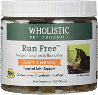 wholistic run free