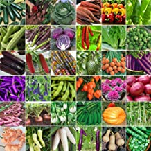 Seeds Package: 400Pcs : Vegetable Garden Seeds Non GMO/Hybrid Organic Survival Seeds Bank Lot