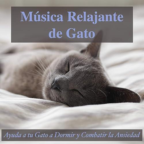 En la Repisa de la Ventana by Relax My Kitten, and Cat Music ...