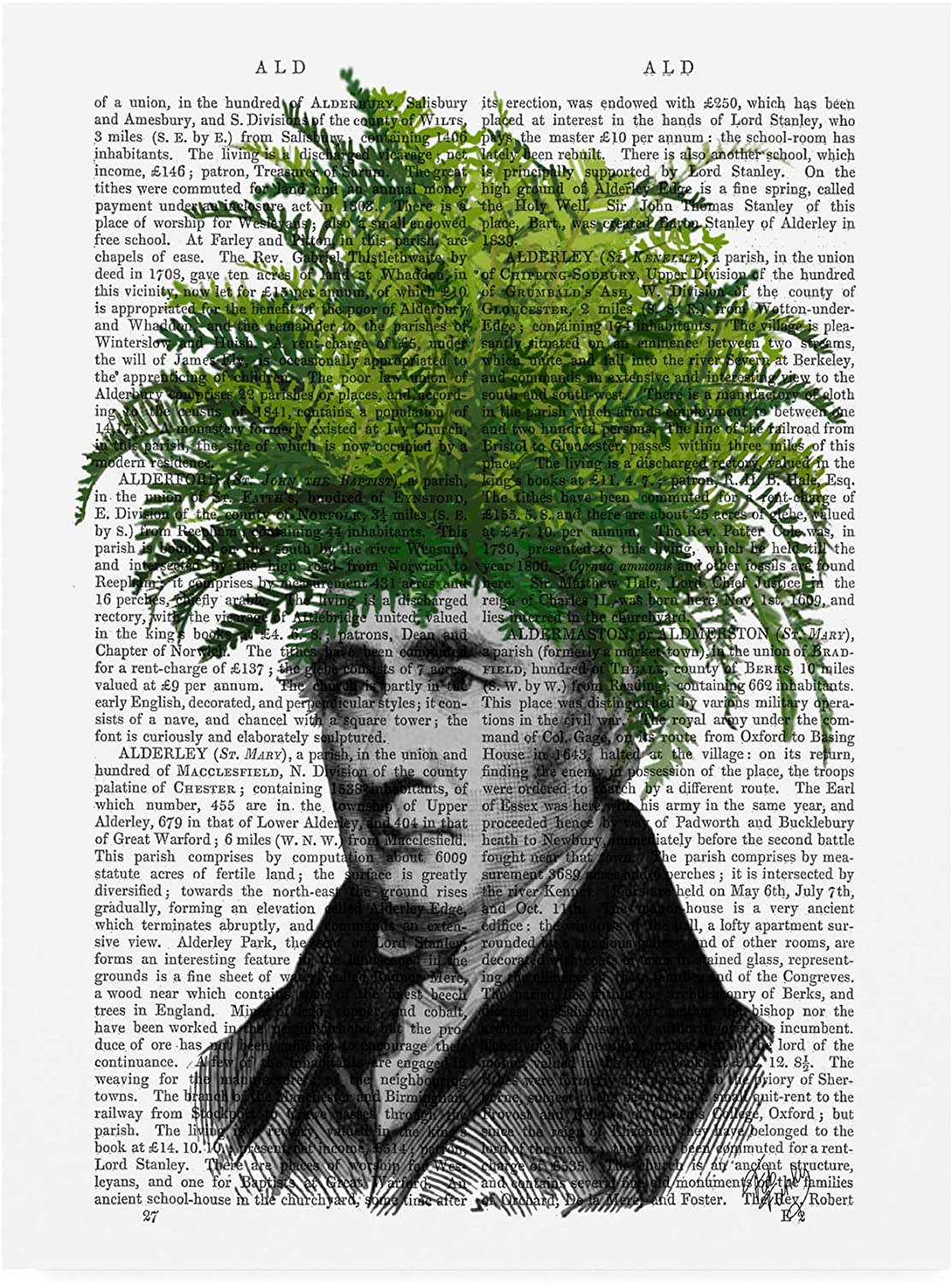 Trademark Fine Art Fern, Plant Head by Fab Funky, 14x19