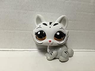 Hasbro Littlest Pet Shop Figure White Tiger # 3586