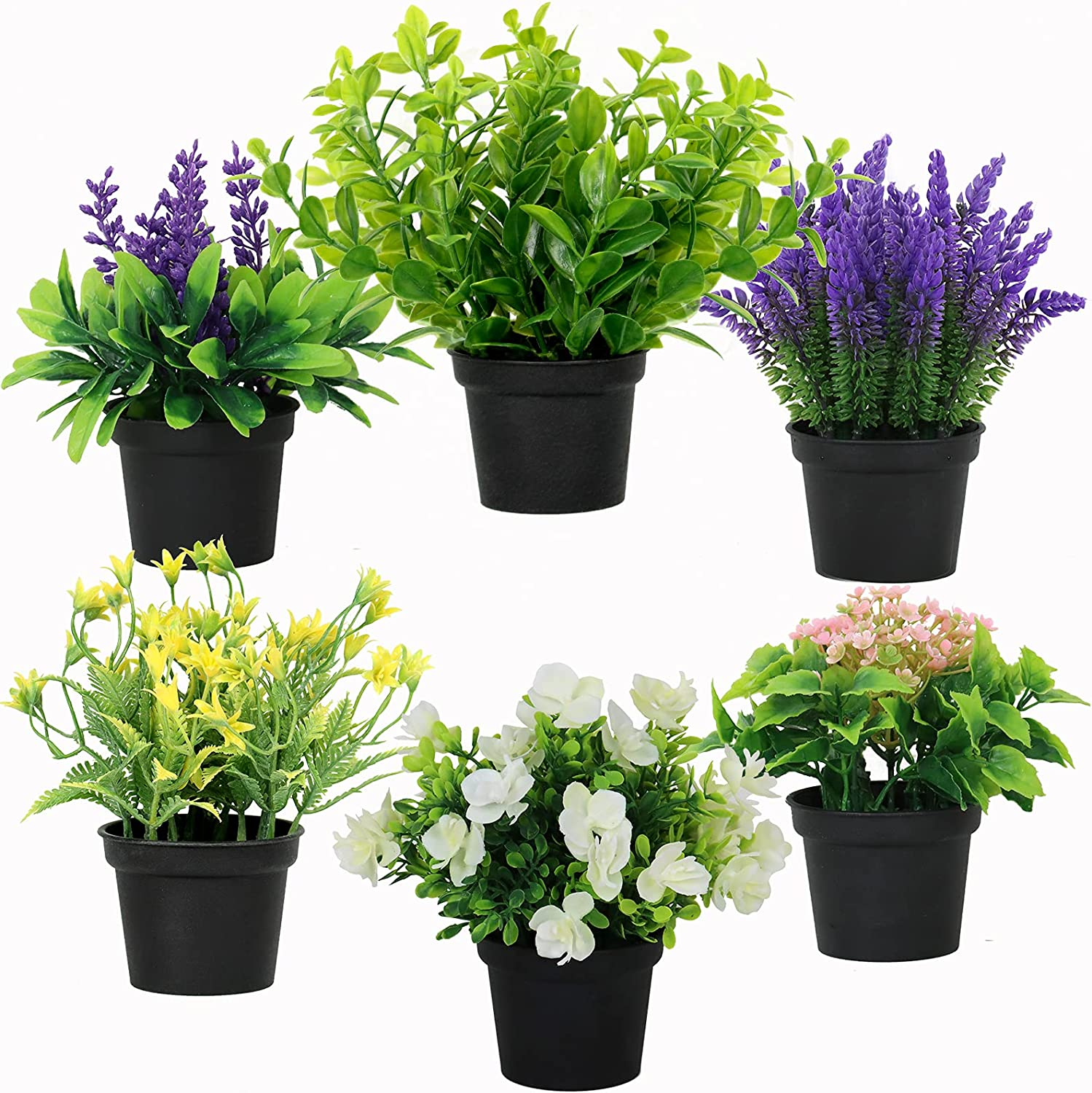 Artificial Potted Plants Green Artificial Plants & Flowers Lavender Flowers Money Leaf Plastic Plant in Pot Set Small Potted Artificial Green Bonsai for Home Decor Outdoor Indoor (6 Packs )