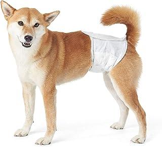 AmazonBasics - Pañal desechable para perro macho, M, paquete de 30 unidades