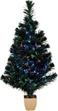 Best fiber optic tree with led lights Reviews