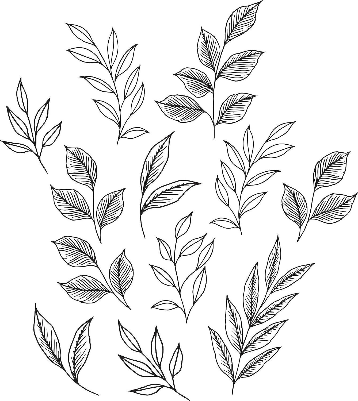 Love 数量限定 並行輸入品 Karla DWPK3900 Brushwood Leaves Wall Decal Black