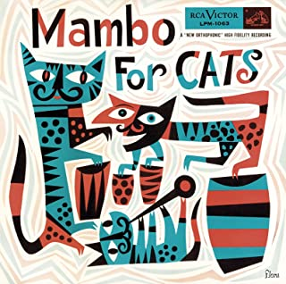 Best mambo for cats Reviews