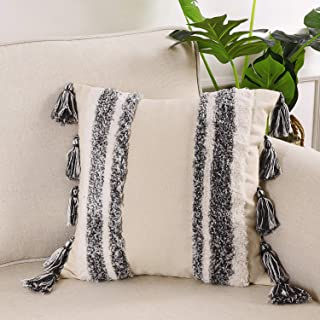 Ailsan Decorative Throw Pillow Cover 20x20 Inch Woven Tribal Boho Tufted Pillow Cases Bohemian Tasseled Square Pillow Sham Pillowcase Cushion Covers for Sofa Couch Bedroom Car Living Room Stripe Black