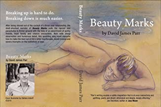 Beauty Marks: a novel