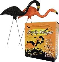 Best orange and black flamingos Reviews
