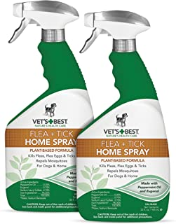 Best Flea Control For Home [2020]