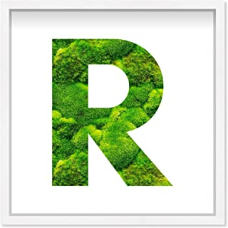 The Oliver Gal Artist Co. Alphabet Letter R Nature' Framed Moss Live Wall Art Home Décor, 12