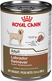Royal Canin Labrador Retriever Adult Breed Specific Wet Dog Food, 13.5 oz. can