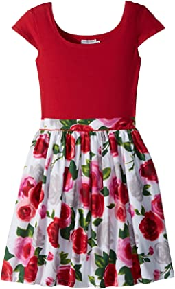 fiveloaves twofish Maddy Roses Dress (Little Kids/Big Kids)