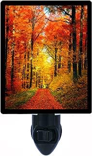 Night Light, Forest Garden, Fall Trees, Autumn Path