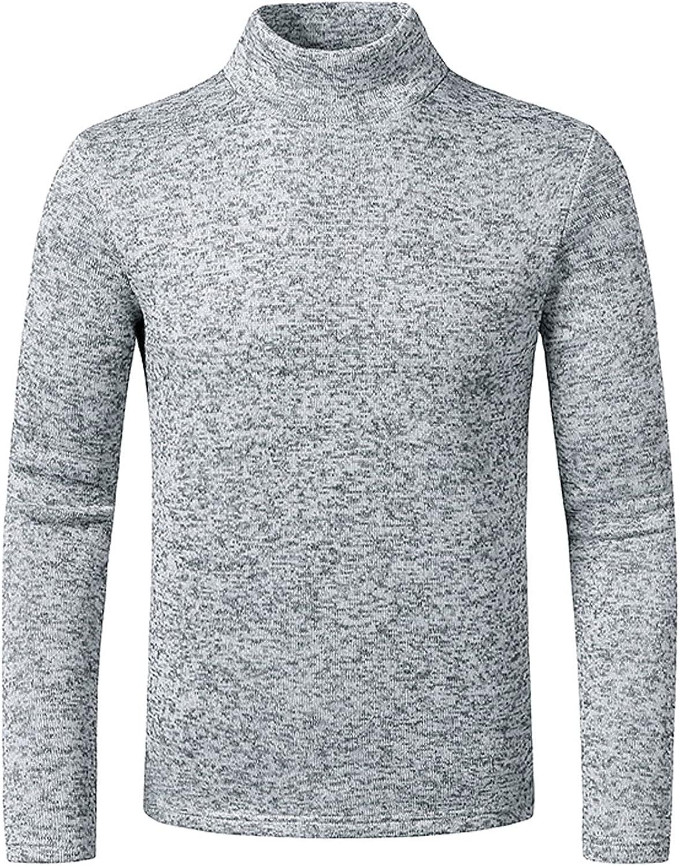 Men Slim Fit Lightweight Long Sleeve Pullover Top Turtleneck Sweaters Solid Color Soft ComfyT-Shirt