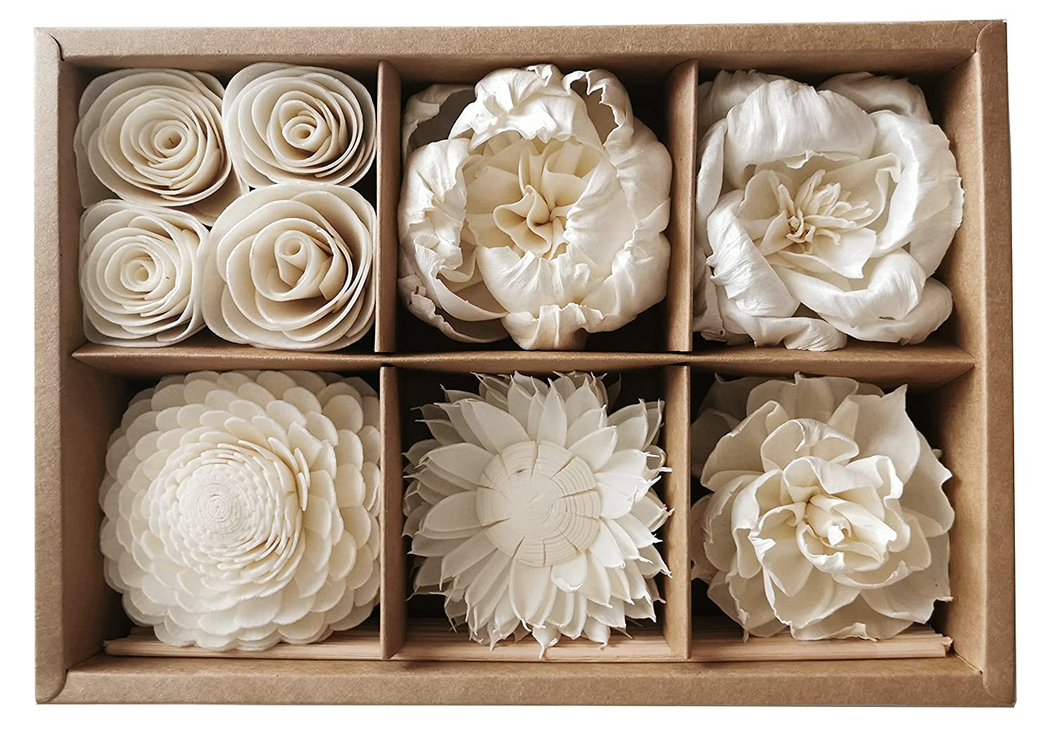 Reed Oakland Mall Diffuser 6 Mix Sola Flower with for Box Home Fr Cotton Wick Free Shipping New