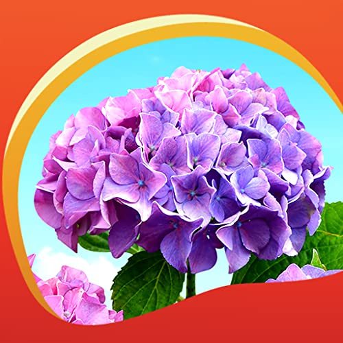 Hydrangea Live Wallpapers