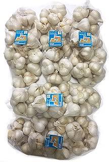 2019年 青森県産 ホワイト六片にんにく 業務用 5kg Mサイズ中心