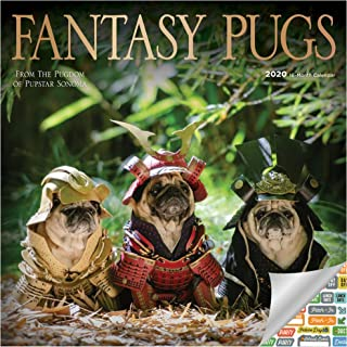 Fantasy Pugs Calendar 2020 Bundle - Deluxe 2020 Pugs Wall Calendar with Over 100 Calendar Stickers (Funny Dogs Gifts, Office Supplies)