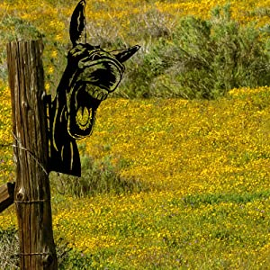 JINRS Peeking Cow/Goat/Chickens/Donkey Metal Art Garden Ornaments,Outdoor Statue Pendant,Cute Rustic Farmhouse Wall Decor Tree Hugger Decoration,Interesting Tree Stump Decoration (A)