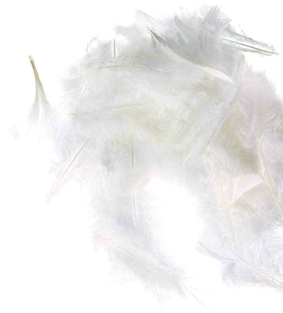 Zucker Feather (TM) - Loose Turkey Flats Dyed - White