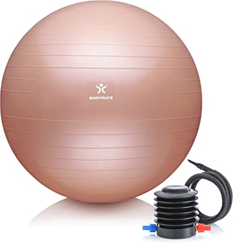 BODYMATE Ballon Fitness + Pompe Incluse + E-Book Gratuit - Différentes Tailles & Coloris