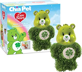 Chia Pet Care Bear Decorative Pottery Planter, Good Luck