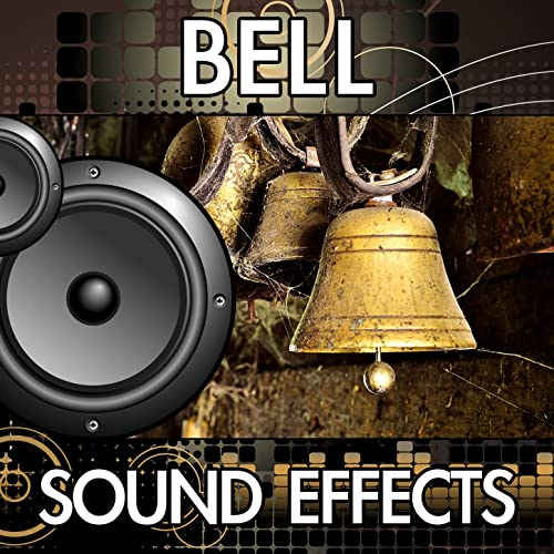 Desk Bell Ring (Hotel Desk Call Bell Ringing Once) by