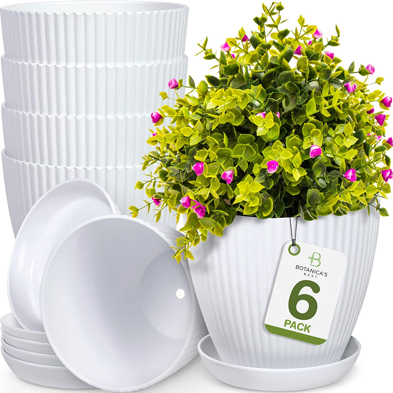 Botanica's Best 6 inch Plant Pots for Plants
