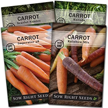 Sow Right Seeds - Carrot Seed Collection for Planting - Rainbow, Nantes, Imperator, and Kuroda Varieties. Non-GMO Heirloom Seeds to Plant a Home Vegetable Garden, Great Gardening Gift