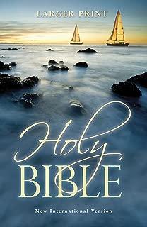 Best new international translation bible online Reviews