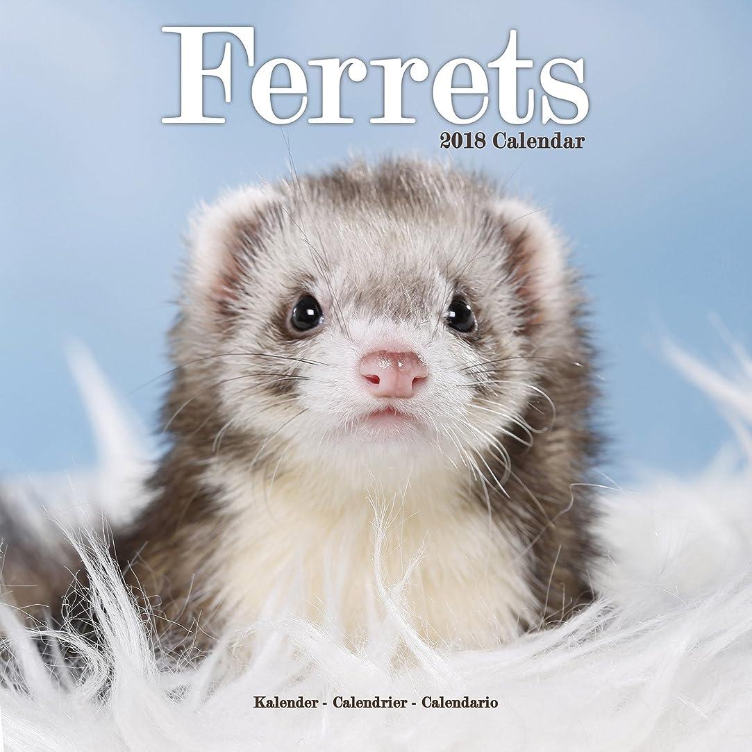 ワーディアンケース六分儀書士Ferrets Calendar 2018