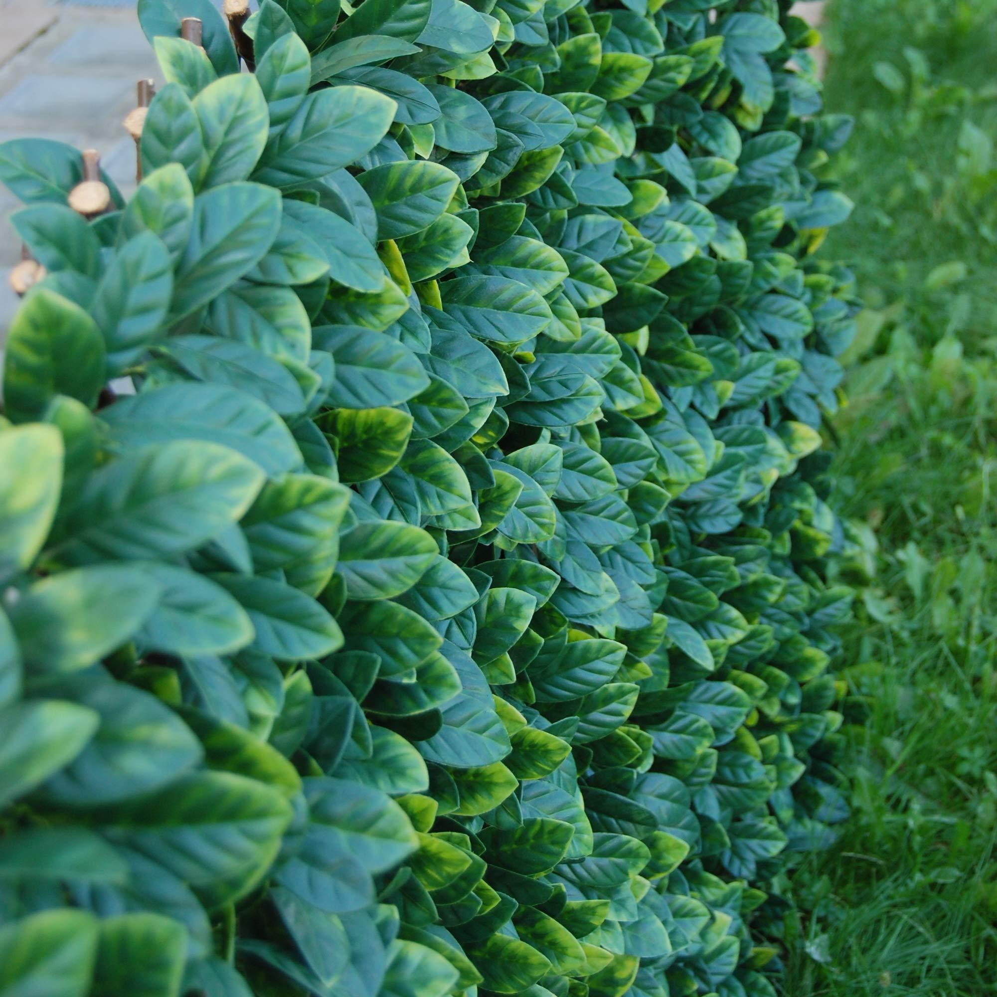 Tenax haie sintética sobre celosía Extensible Divy Verde 200 x 4 x ...