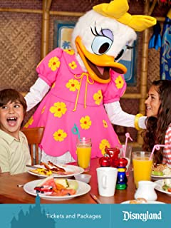 Disneyland Resort: Chapter 6, Tickets and Packages