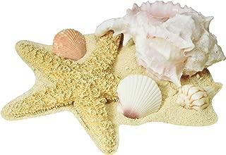 Seashell Cutouts   (4/Pkg)