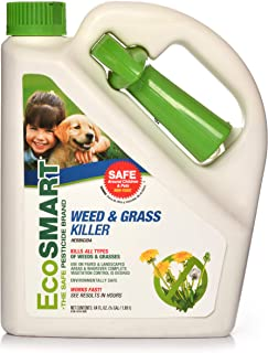 EcoSMART Weed and Grass Killer, 64 oz. Spray Bottle