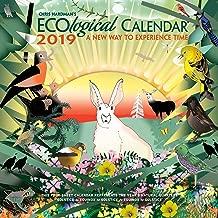 Best eco calendar 2019 Reviews