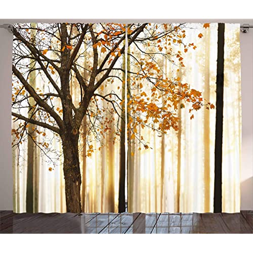 Ambesonne Curtains For Living Room By Fall Trees Woodsy Country Theme Home Decor Dining