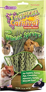 F.M. Brown'S Tropical Carnival Natural Wheat Sprays Foraging Treat For Rabbits, Chinchillas, Guinea Pigs, Hamsters, Gerbil...