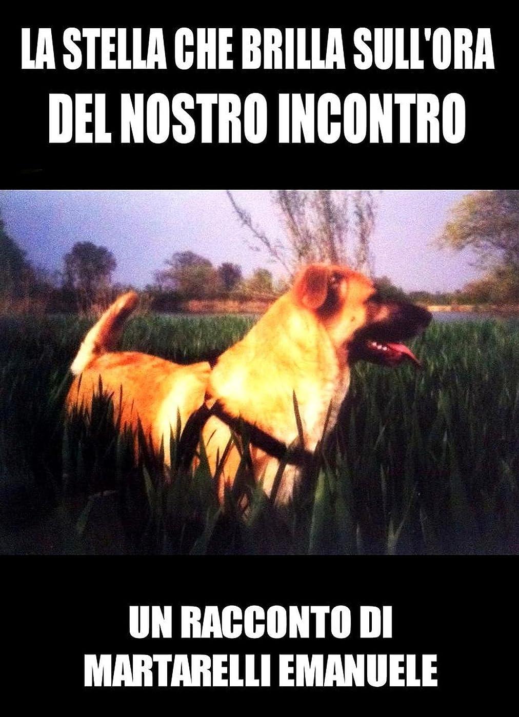 吸収剤強調著者La Stella che Brilla nell'Ora del Nostro Incontro (Italian Edition)
