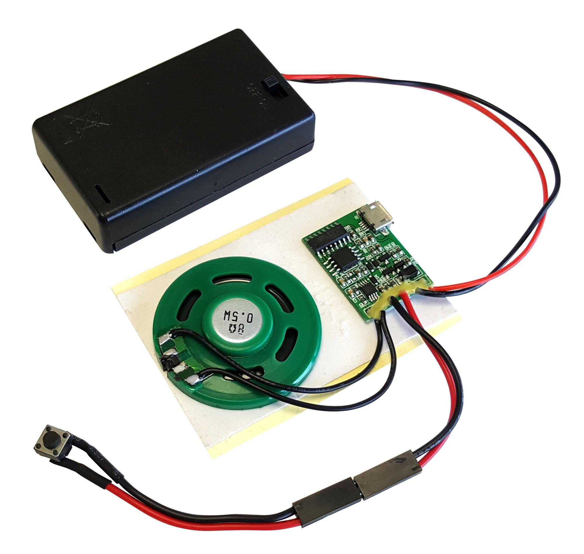 Talking Products - Módulo de chip de sonido MP3, 4 MB de memoria, con caja para batería AAA Ideal para maquetas y manualidades.: Amazon.es: Oficina y papelería