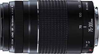 Canon EF 75-300 mm f/4.0-5.6 III Lens-Black