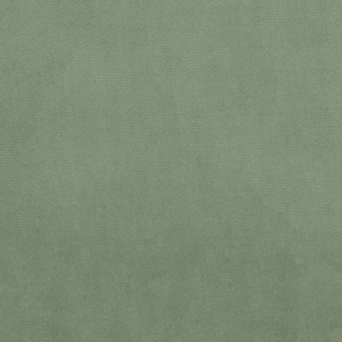 Outlet SALE Sage Green Solids Plain Woven Fabric New popularity the Upholstery ya by