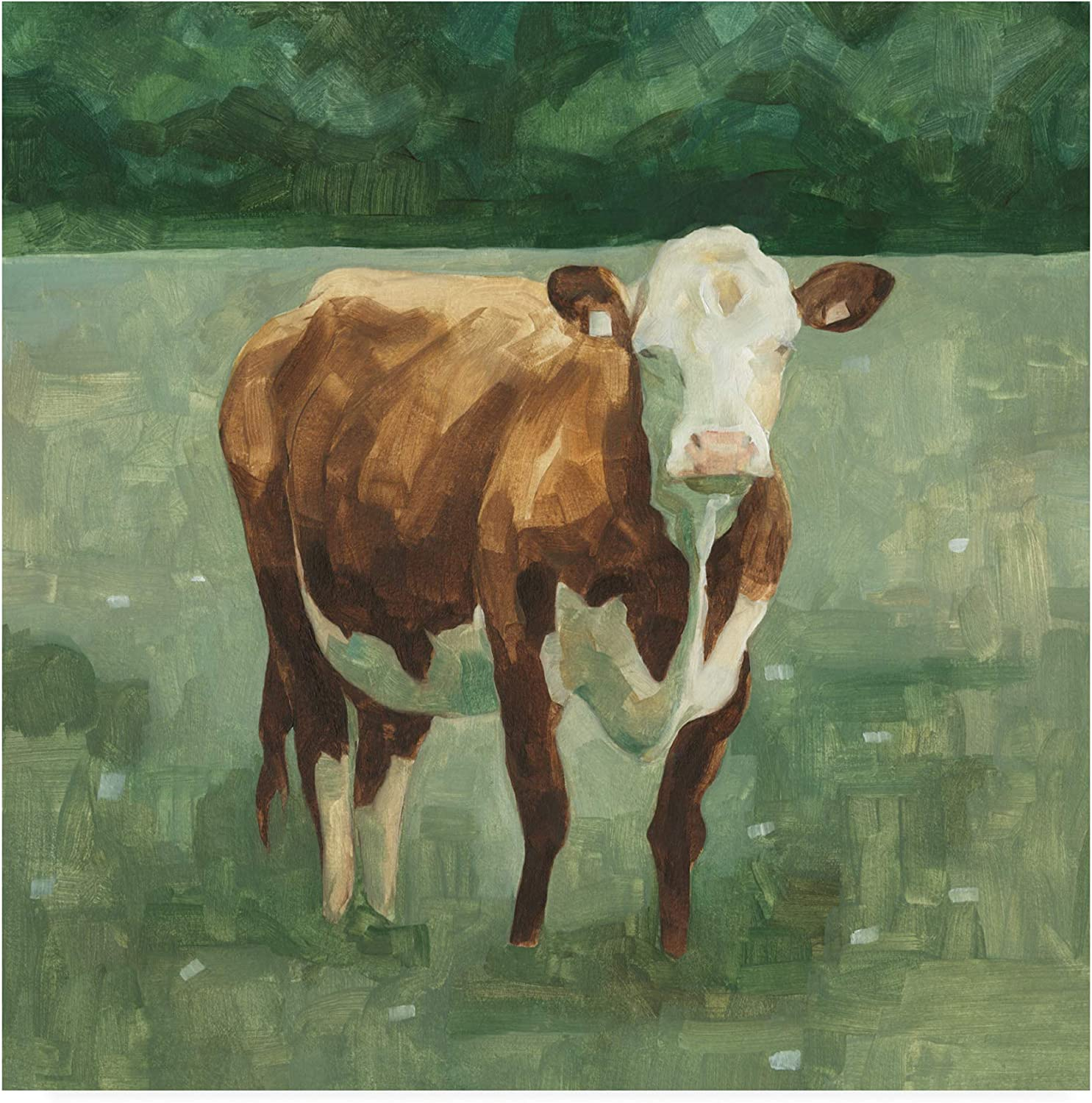 Trademark Fine Art Hereford Cattle I by Emma Scarvey, 14x14