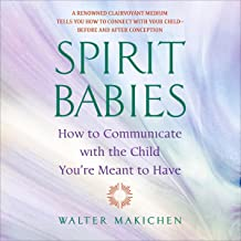 Spirit Babies: How to Communicate with the Child You're Meant to Have